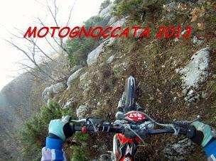 MOTOGNOCCATA